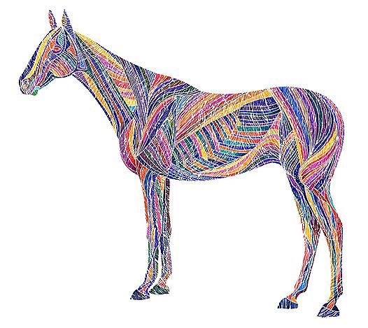 horse_web_miro_1000